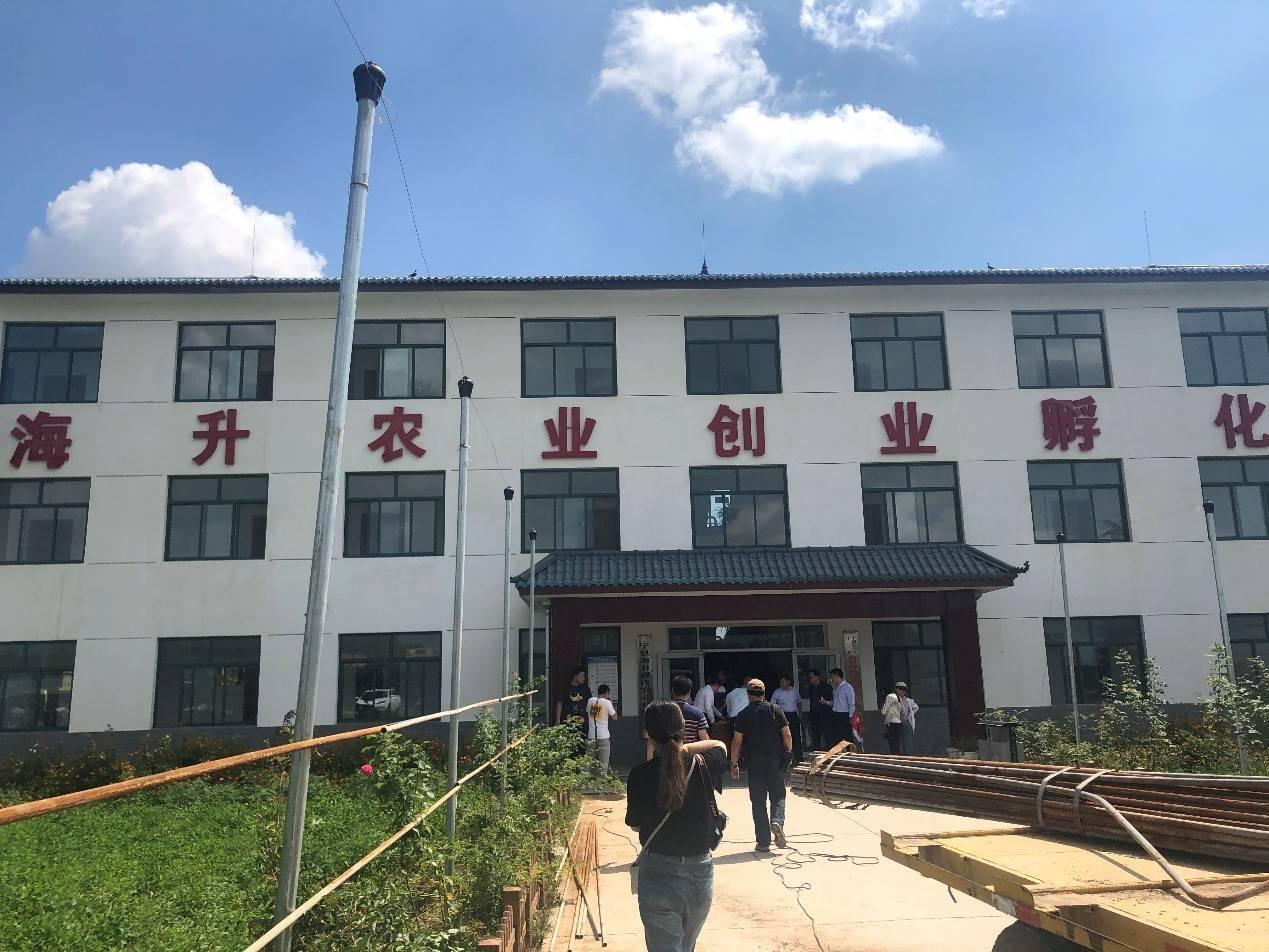 """走访甘肃庆阳宁县:长在""""藤""""上的苹果带来现代产业扶贫路"""