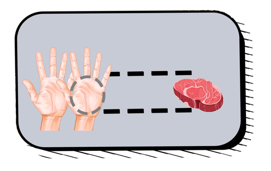 """糖尿病饮食""""手掌法则"""",看看双手就知道该吃多少"""