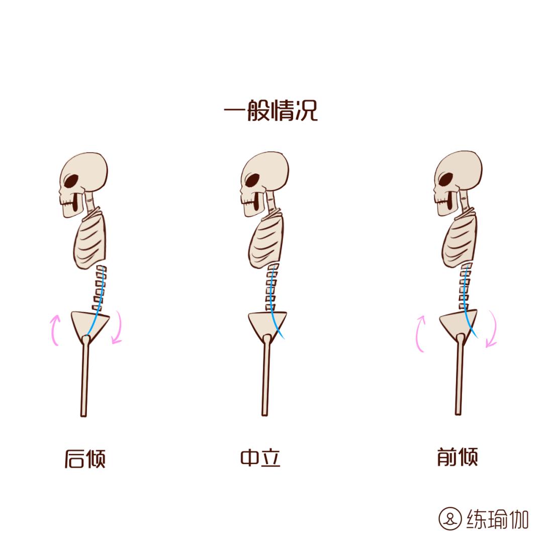 收胯收阴,矫正骨盆前倾,让阴道恢复紧致,每天10分钟滋养子宫!_垫子