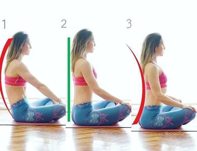 练瑜伽,老师常说的延展脊柱,你做对了吗?_肋骨