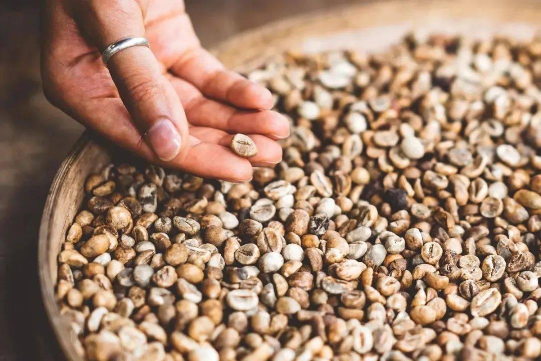 咖啡萃取率为什么22%之后是苦的? 试用和测评 第4张