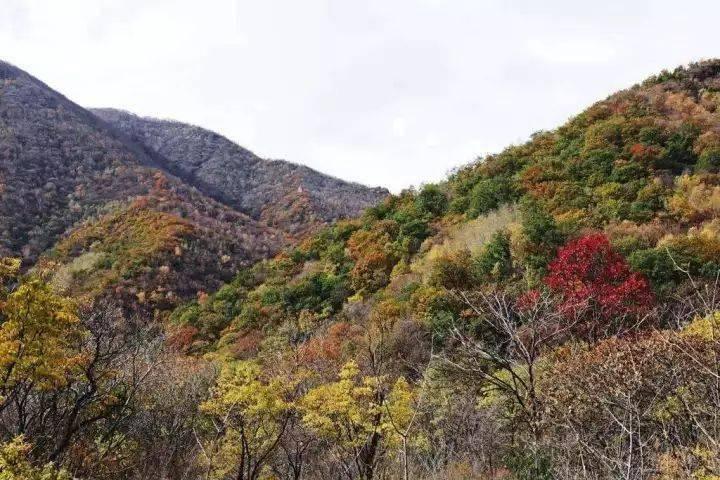 秋日京西门头沟, 5大尽赏秋色好去处!