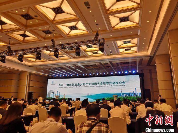 黄浦江畔的农事对话:浙沪两地再度携手共谋发展