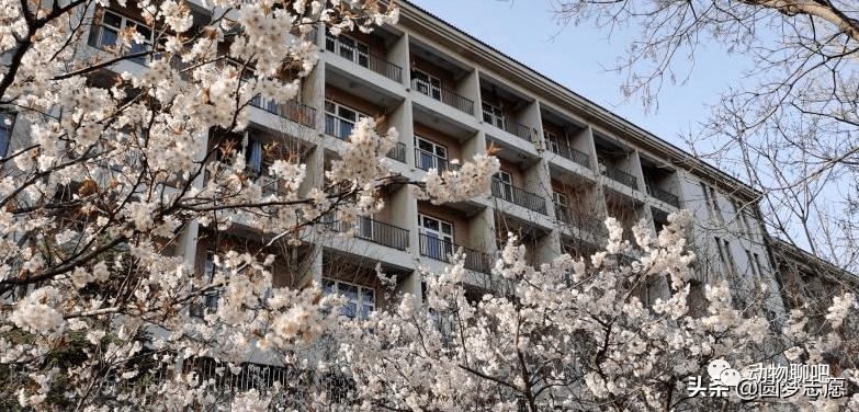 河南最好的财经大学:河南财经政法大学在全省