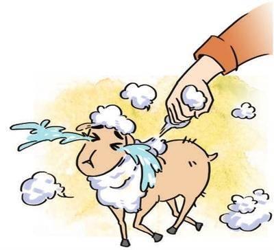 长虹经销商被薅羊毛破产:根据合同服务 他们还必须检查泄漏和填补空缺
