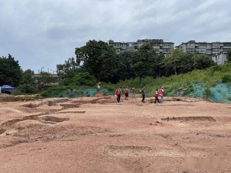 冲上热搜!广州一中学发掘125座古墓!