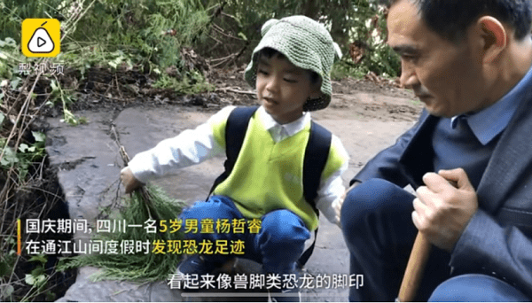 恐龙研究新纪录!少年得到 5岁学员成最小恐龙足迹发现者