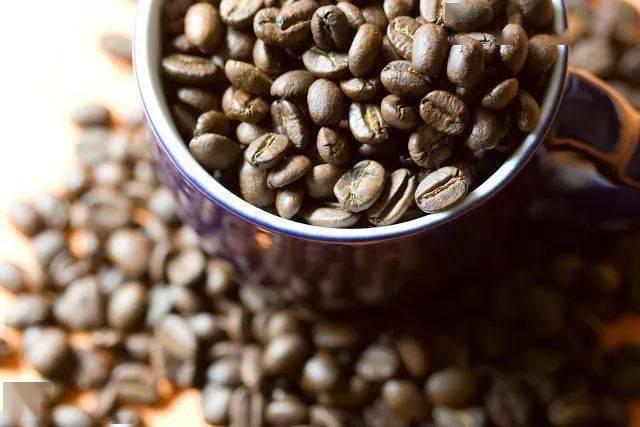 为何阿拉比卡咖啡更受欢迎? 十大品牌 第3张