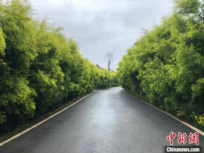 重庆铜梁:60公里绿道串起原乡生长新风物