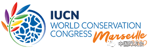 绿会国际部召开IUCN WCC提案投票讨论会