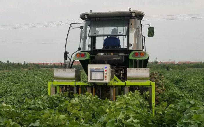 我国棉花生产装备打破国外技术垄断