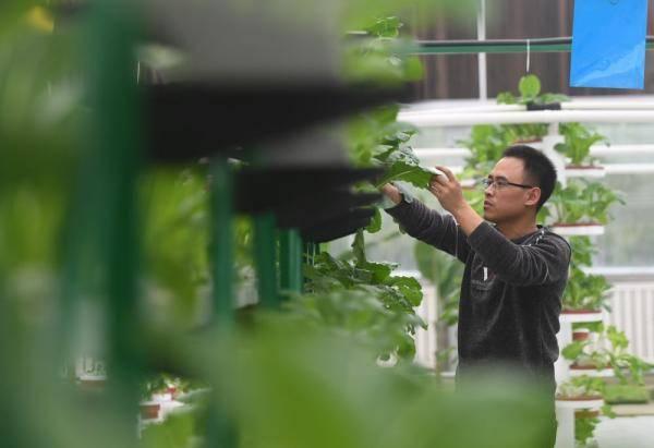 """打造现代农业园区 农民变身""""产业工人"""""""