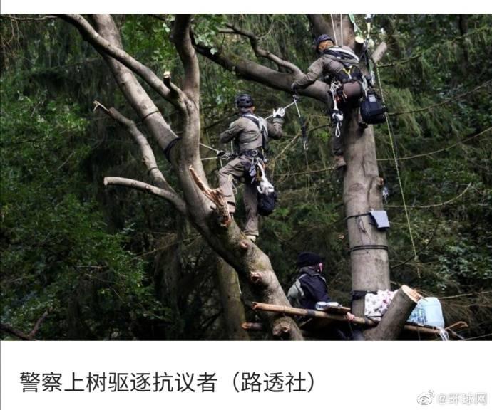 德国环保人士抗议森林里建高速 警察爬树上抓人