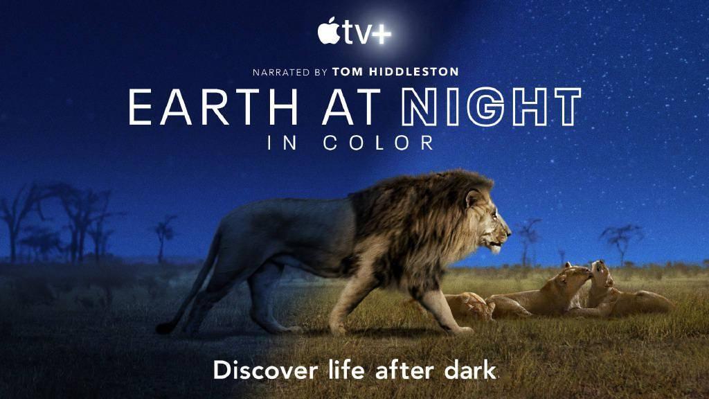 """纪录片《夜色中的地球》12月4日上线,""""抖森""""担任旁白"""