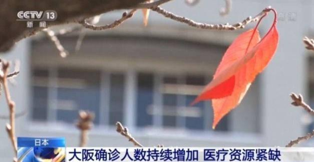 国家 非常 事態 宣言 日本