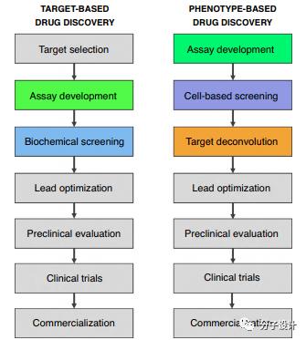 创新药物研发中的高通量筛选方法进展