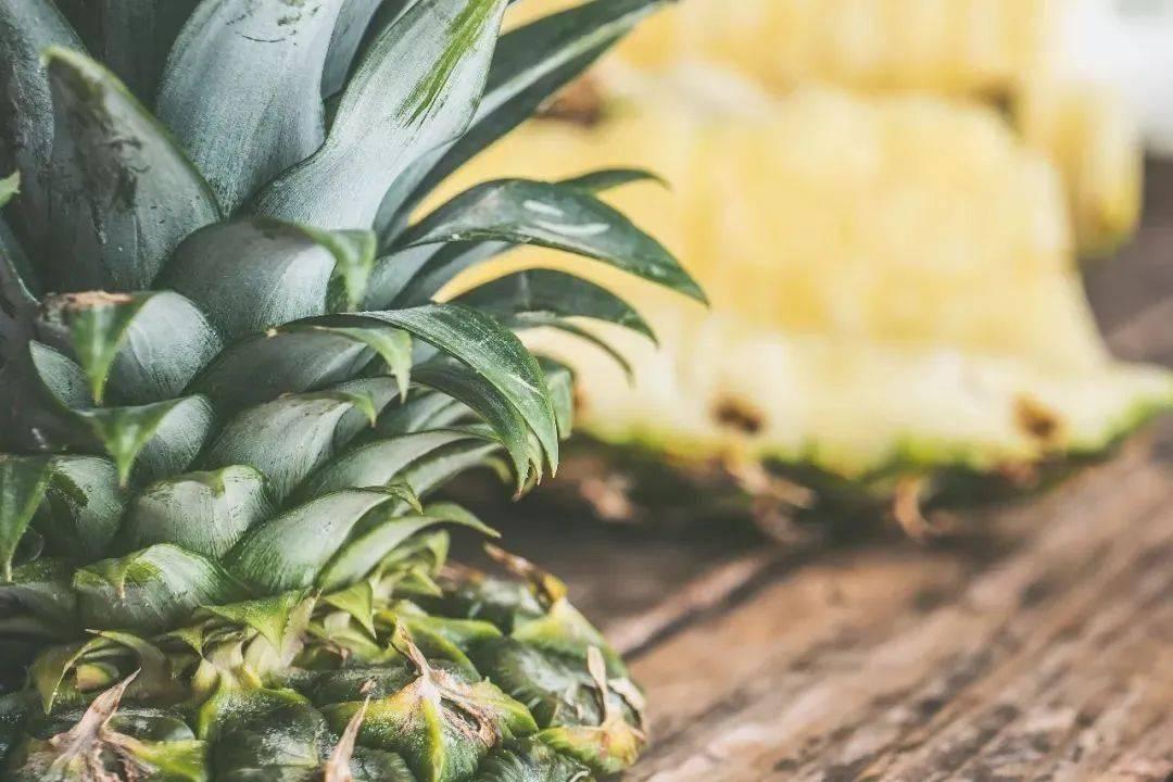 超受欢迎的热带水果——菠萝!不仅好吃,而且好处多多~  第3张