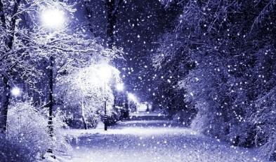 """明日进入三九,该吃""""冬补八宝""""了,美味营养好,浑身暖和不怕冷"""