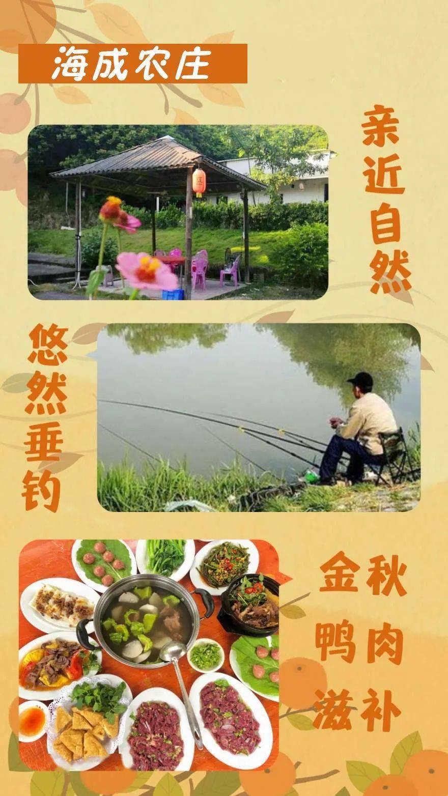 超值套餐!一只鸭子多吃点解锁农家乐的原味,自然风光是悠闲垂钓,正好进去......