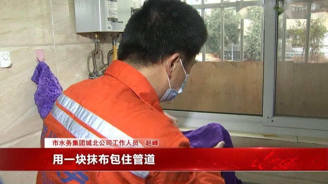"""敢冻杭州!""""我家水盆里的鱼冰住了,还能救吗?""""回暖的消息来了!"""