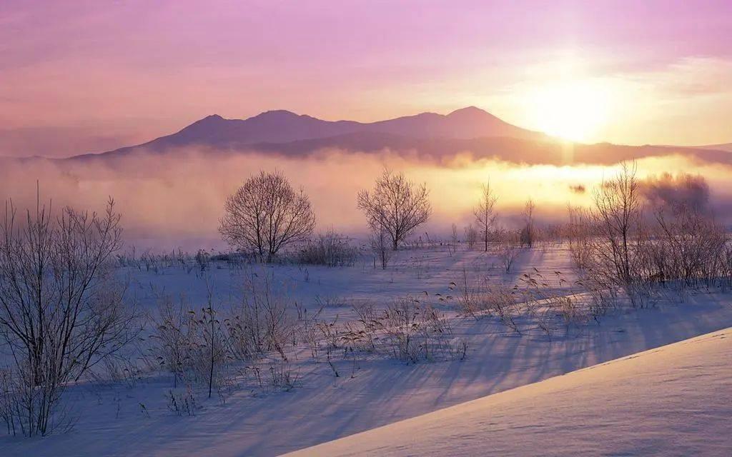 建工之声 ‖ 济南的冬天