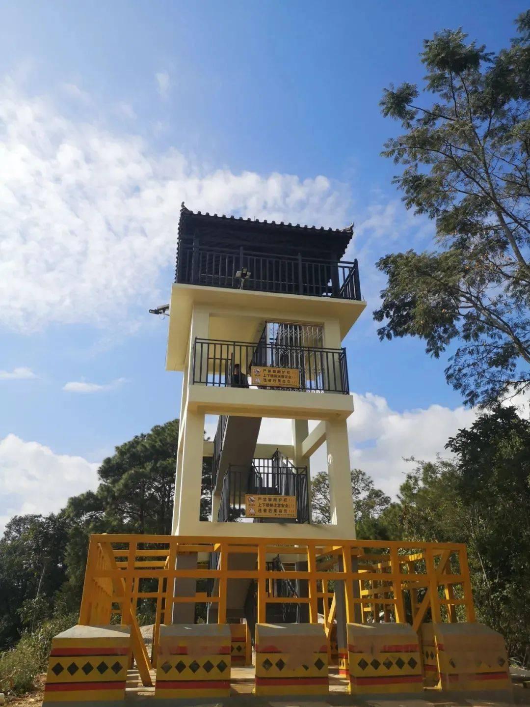 可用于紧急避险!普洱建成国内首个亚洲象监测塔