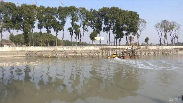 不平凡的2020!嘉兴水质达到两个100%,水环境质量实现历史性突破