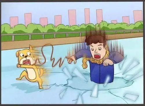 锦州市两名男子落水,还有一条金毛……