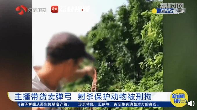 主播为卖弹弓拍摄打鸟视频被拘!