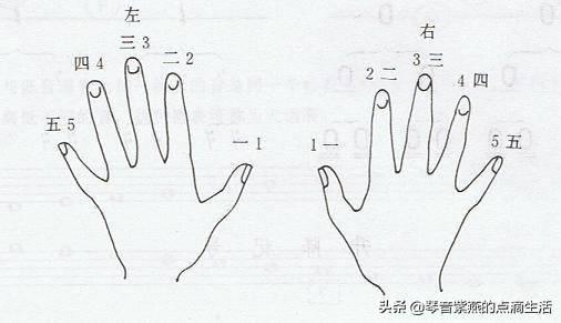 从零起步学电子琴 电子琴0基础多久能学会