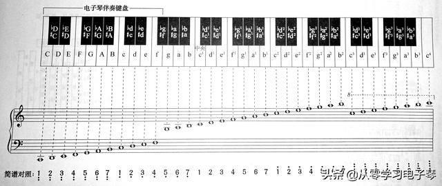 电子琴基础知识入门(初学者怎么看懂电子琴琴谱)
