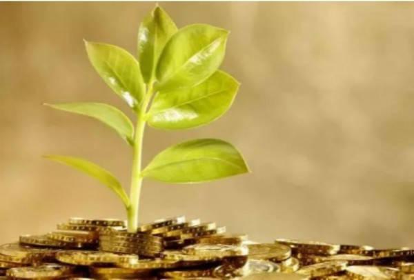 永辉金融贷款可靠吗?里面的小辉贷好不好下款?插图(2)