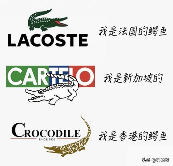 鳄鱼恤属于什么档次(三个鳄鱼哪个品牌最好)