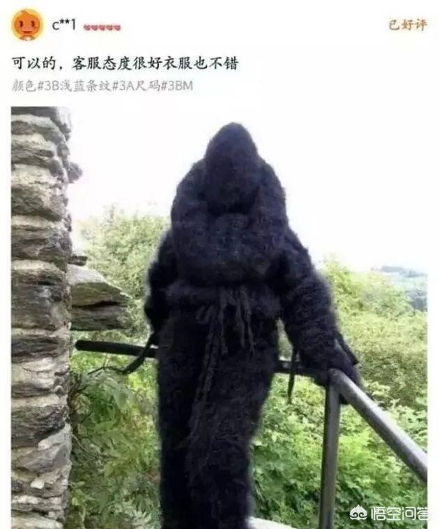 淘宝卖家最怕什么(最新报复淘宝卖家绝招)