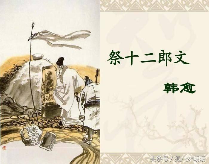 祭十二郎文翻译(祭十二郎文重点字词)