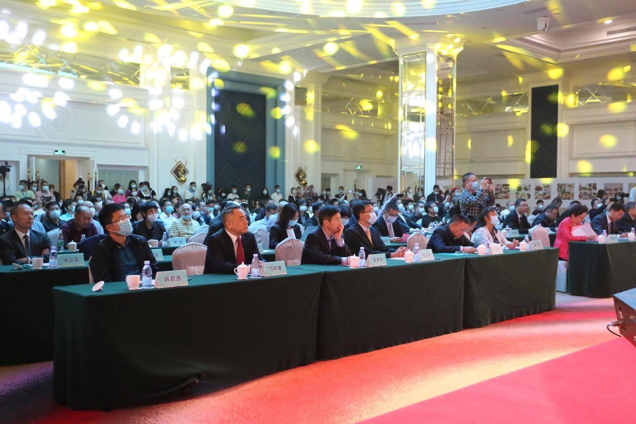 2020中国房车休闲度假大会开幕 全国200余辆房车参加