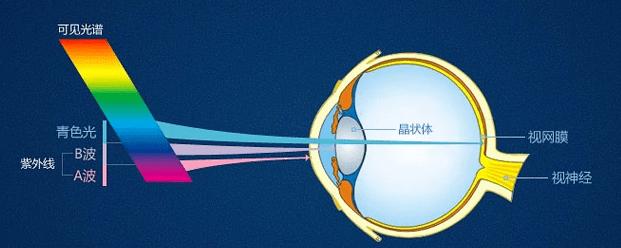 防蓝光是什么意思(防蓝光真的有必要吗)插图(3)