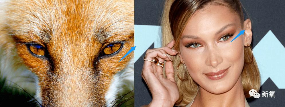 """""""狐狸眼""""眼妆是美妆界的审美新风向?"""