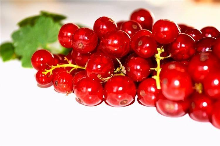 越吃越好的食物,推荐给大家,预防心血管疾病,保护心脏,气色好