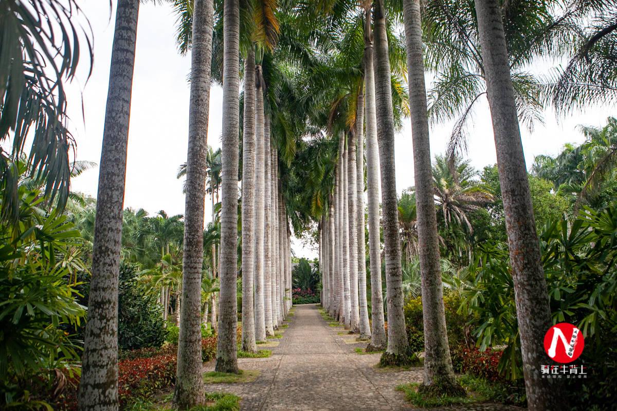 海南热带植物园,面积600多亩,有3000多种少见的植物