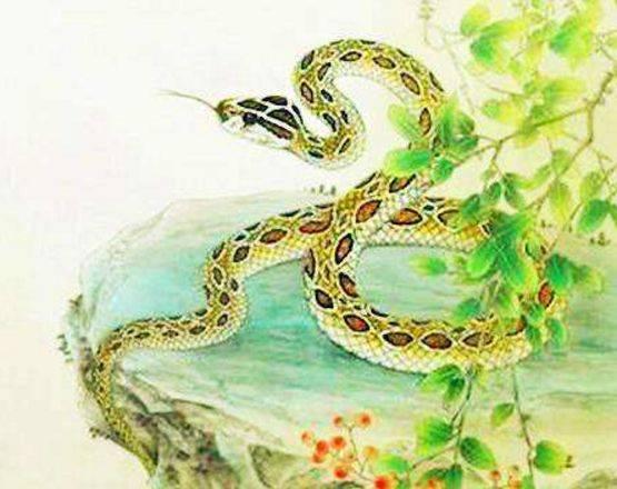2月多福多禄,大金蛇发财不求人