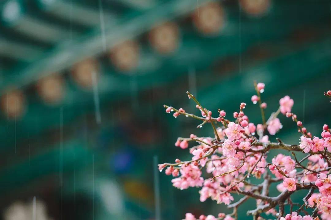 """都说""""春捂秋冻"""",你知道怎么""""捂娃""""吗?捂对地方宝宝年年平安"""