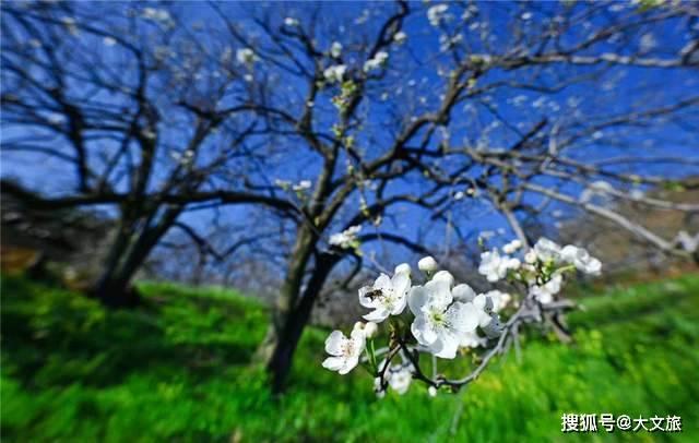 组图!红河开远的春夏秋冬