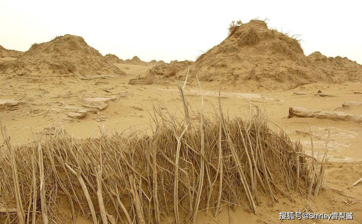 """《鬼吹灯》中精绝古城真的存在?位于""""死亡之海""""边缘,却在1700年前突然消失"""