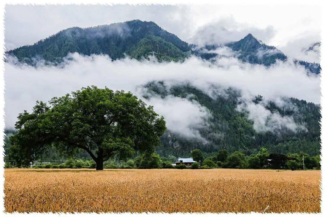 西行漫记·26 川藏线上的景观大道