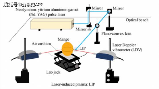 非接触式水果成熟度检测方法出现! 借助激光和等离子冲击波技术