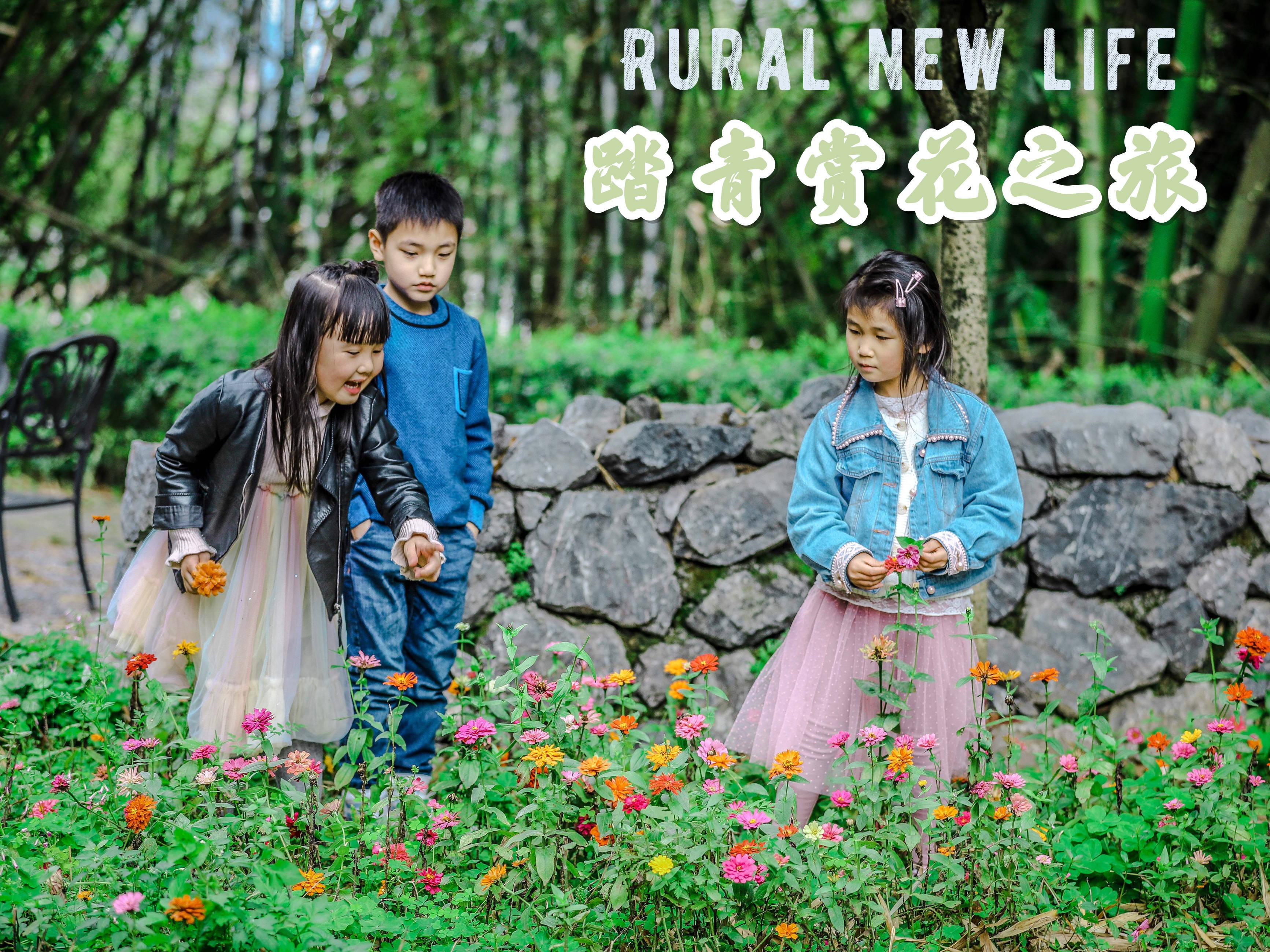 春日赏花季,广州海边赏花攻略,收藏赶紧去打卡
