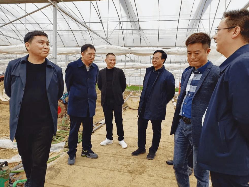 助力樟树港辣椒产业发展 阳雀湖与湖南农业大学达成战略合作