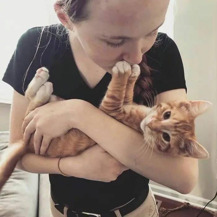 人生99.9%都是被猫拒绝的……
