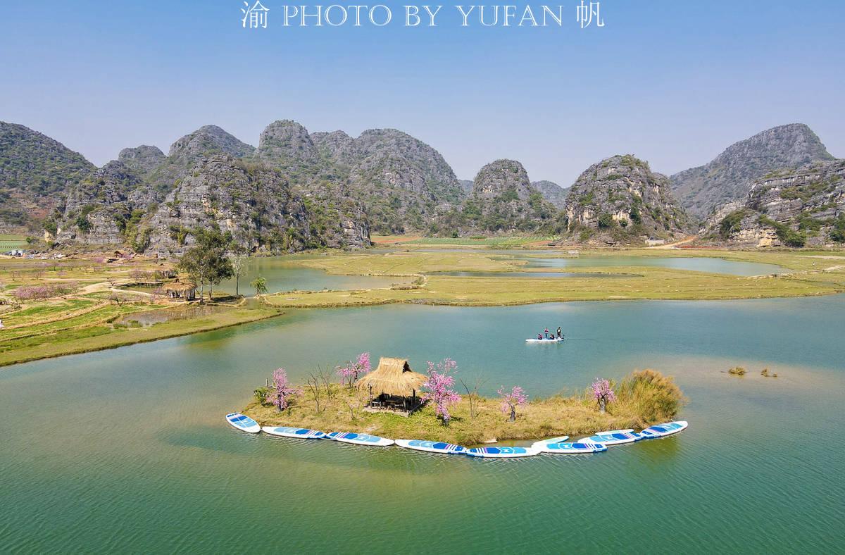 原創             云南一個5A景區以假桃花吸引旅行家,旅行家卻樂在其中,還表示真香